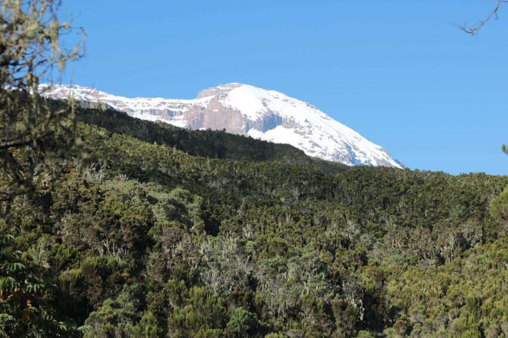 Kilimanjaro from Machame Camp